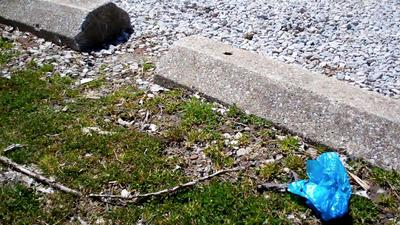 Blue plastic bag litter at a park.